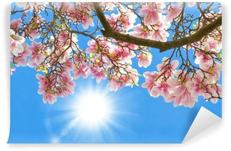 Magnolia in the sun Wall Mural - Vinyl