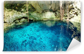 mexican cenote, sinkhole Wall Mural - Vinyl