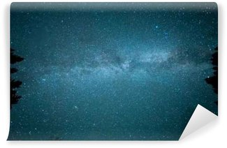 Milky way in the forest among trees Wall Mural - Vinyl