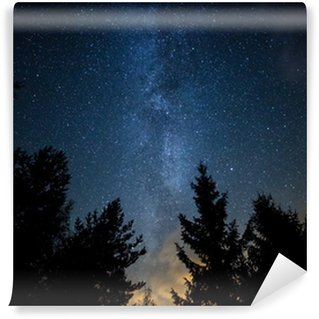 Milky Way over the Forest Wall Mural - Vinyl