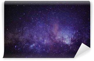 Vinyl Wall Mural Milky Way