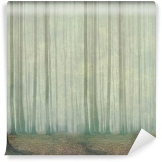Misty evening in the forest Wall Mural - Vinyl
