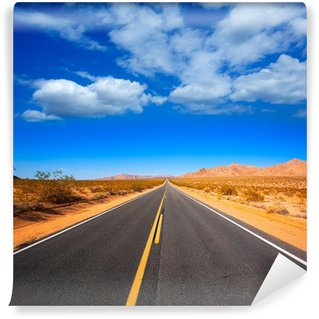 Mohave desert by Route 66 in California USA Wall Mural - Vinyl