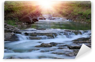 Montain river Wall Mural - Vinyl