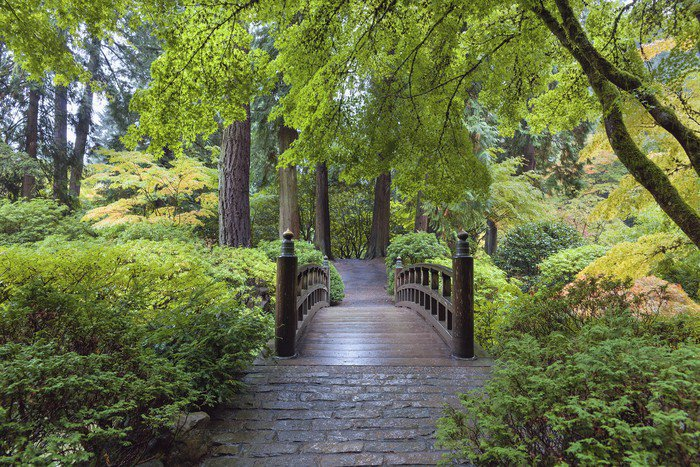 Exceptional Wall Mural   Vinyl Moon Bridge At Japanese Garden   Seasons Part 31