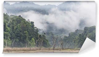 Morning fog and dead trees in dense tropical rainforest, Perak, Malaysia Wall Mural - Vinyl