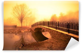 morning light and fog over pond with footbridge Wall Mural - Vinyl