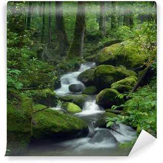 Mossy waterfall Wall Mural - Vinyl
