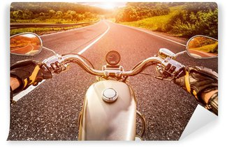 Motorcyclist on the road Vinyl Wall Mural