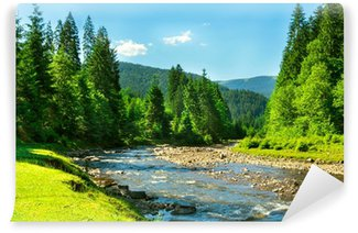 mountain river Wall Mural - Vinyl
