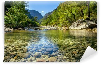 Mountain stream Wall Mural - Vinyl