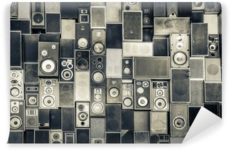 Vinyl Wall Mural Music speakers on the wall in monochrome vintage style