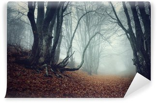 Mysterious autumn forest in fog Wall Mural - Vinyl