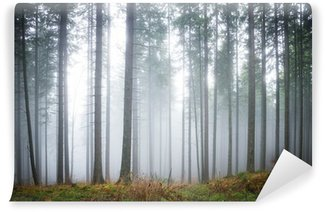 Mysterious fog in the green forest Wall Mural - Vinyl