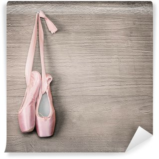 Vinyl Wall Mural new pink ballet shoes