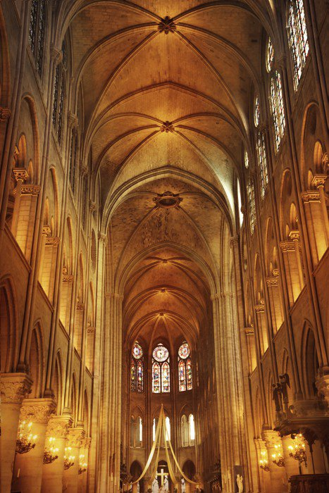 Wall Mural   Vinyl Notre Dame Cathedral In Paris   European Cities