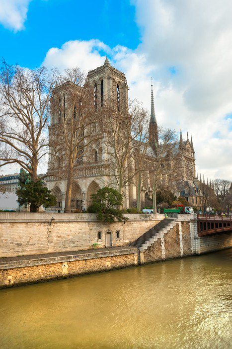 Vinyl Wall Mural Notre Dame De Paris, France.   European Cities