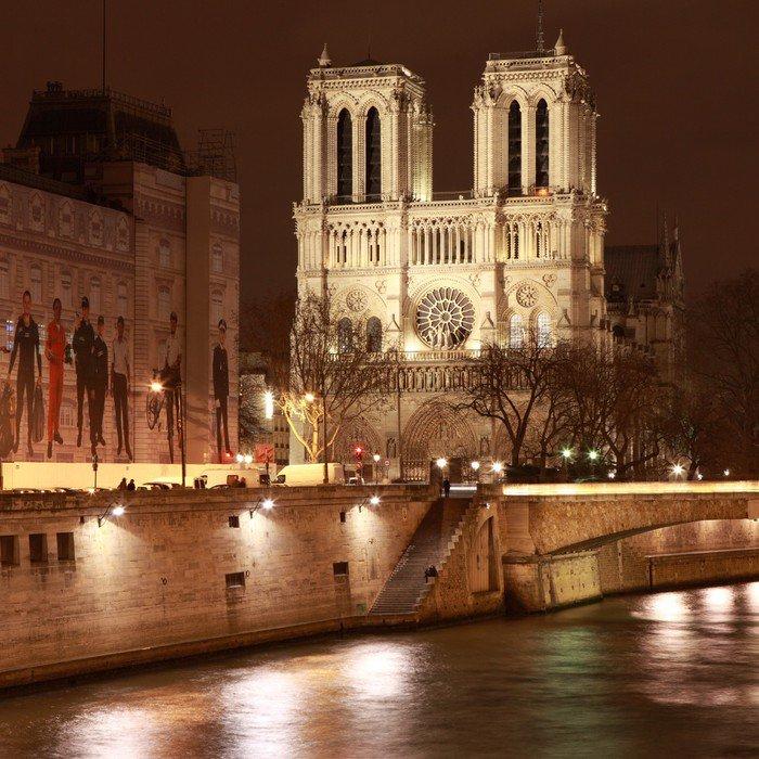 Wall Mural   Vinyl Notre Dame De Paris La Nuit   Themes