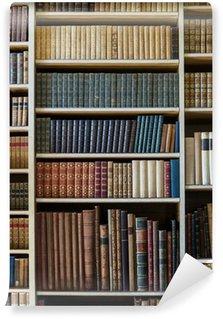 Wall Mural - Vinyl old books
