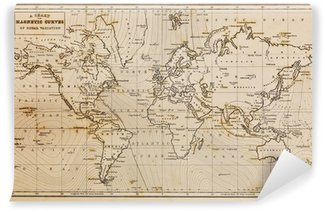 Old fashioned wall murals pixers old hand drawn vintage world map vinyl wall mural gumiabroncs Choice Image