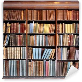 Vinyl Wall Mural old library bookshelf