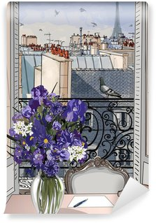 open window on the roofs of Paris