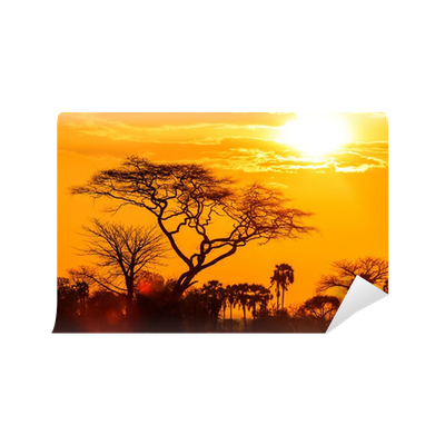 Orange glow of an african sunset wall mural pixers we for African sunset wall mural