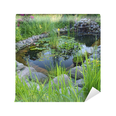 Ornamental pond with waterfall in garden wall mural for Ornamental pond waterfall