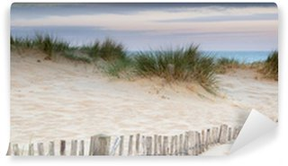 Vinyl Wall Mural Panorama landscape of sand dunes system on beach at sunrise