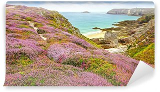 Panoramic view over Cap Frehel, Brittany, France Wall Mural - Vinyl