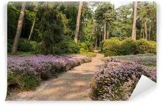 Path through heather in forest Wall Mural - Vinyl