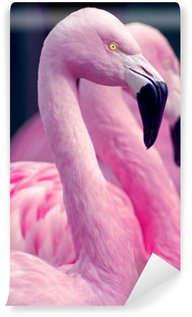Wall Mural - Vinyl Pink Flamingos