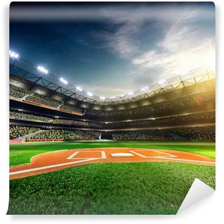 Professional Baseball Grand Arena In Sunlight Vinyl Wall Mural