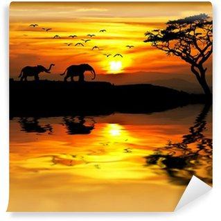 puesta de sol en Africa Wall Mural - Vinyl