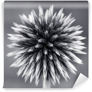 Purple Globe Thistle B&W Wall Mural - Vinyl