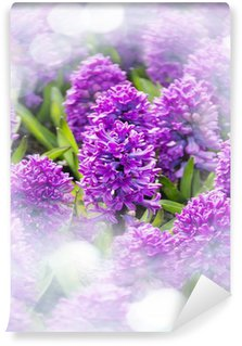 purple hyacinths in the garden Wall Mural - Vinyl