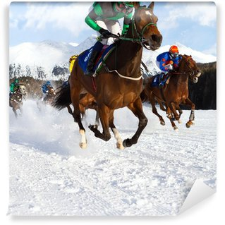 race horses in the snow Vinyl Wall Mural