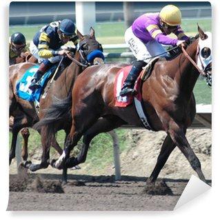race horses & jockeys Wall Mural - Vinyl