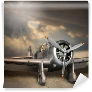 Vinyl Wall Mural Retro style picture of the aircraft.