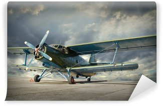 Vinyl Wall Mural Retro style picture of the biplane. Transportation theme.