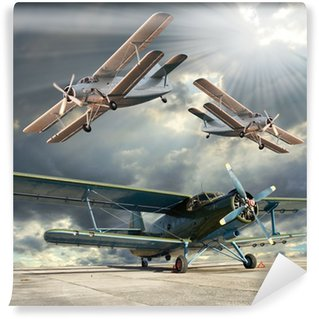 Vinyl Wall Mural Retro style picture of the biplanes. Transportation theme.