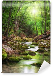 River deep in mountain forest Wall Mural - Vinyl