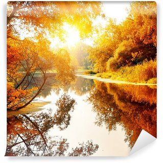 River in a delightful autumn forest Wall Mural - Vinyl