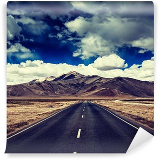 Vinyl Wall Mural Road on plains in Himalayas with mountains