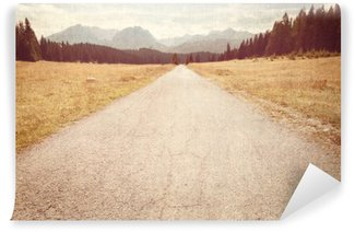 Road towards the mountains - Vintage image Wall Mural - Vinyl