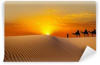 Sahara Wall Mural - Vinyl