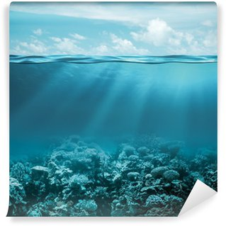 Sea or ocean underwater deep nature background Wall Mural - Vinyl