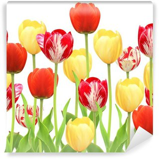Seamless border with tulips