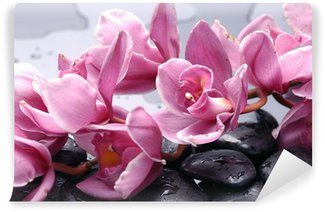 Wall Mural - Vinyl Set of cattleya orchid flower and stone with water drops