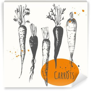 Wall Mural - Vinyl Set of hand drawn carrots. Black and white sketch food.